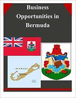 Top 10 Small Business Opportunities in Bermuda